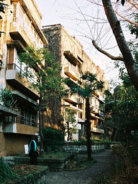 青山アパート 裏側