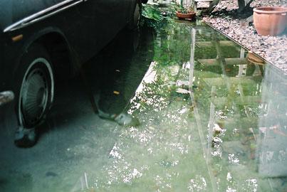 20051104-reflect02.jpg