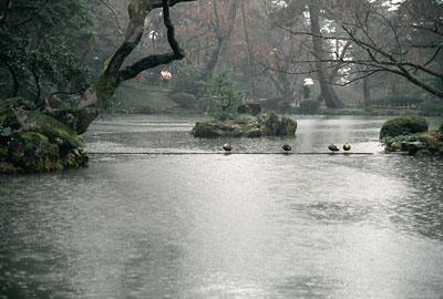 20060307-rain.jpg