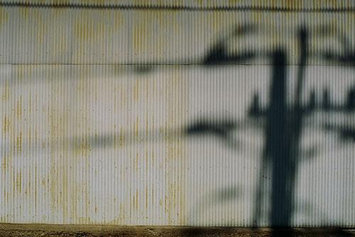 20061025-shadowgraph.jpg