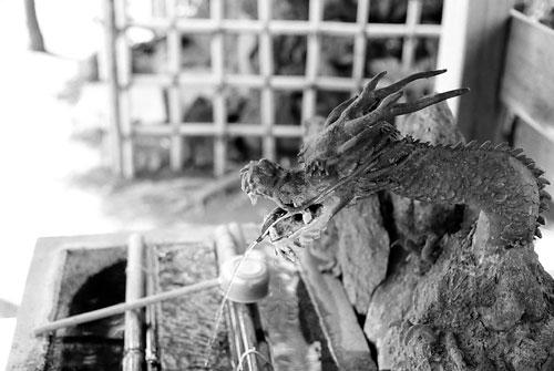 20071103-dragon03.jpg
