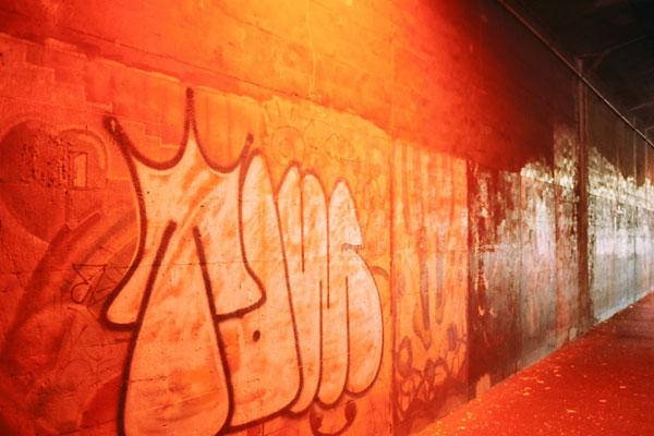 20080129-orange03.jpg
