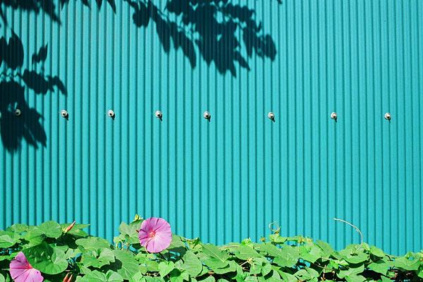 20081019-blue_green.jpg