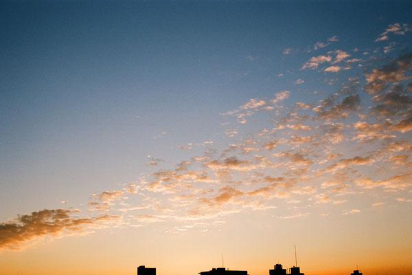20090112-dawn02.jpg