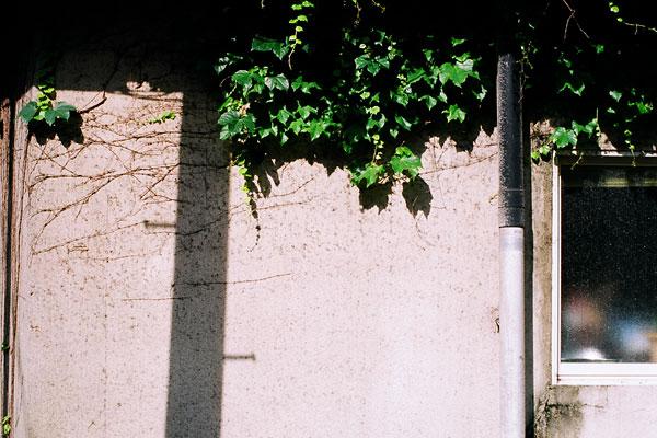20090704-wall05.jpg