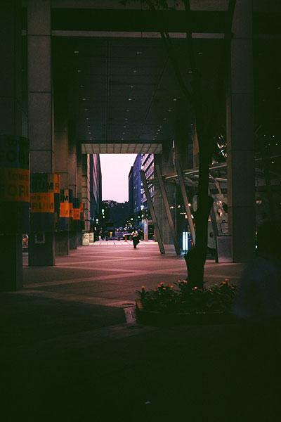 20090722-twilight01.jpg