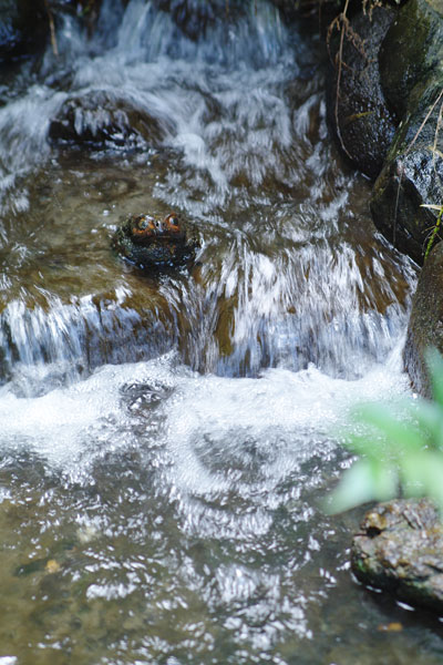 20090906-god_of_water.jpg