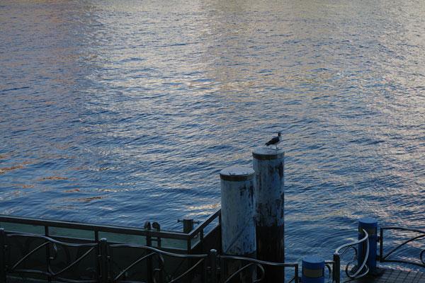 20090930-river_edge02.jpg