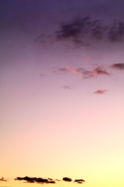 20091231-eveningglow08.jpg