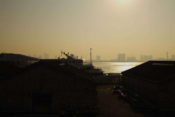 20100302-morning_mist.jpg