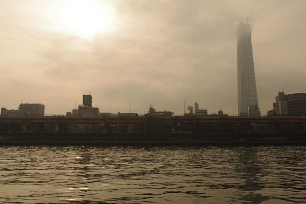 20100313-morning-mist02.jpg
