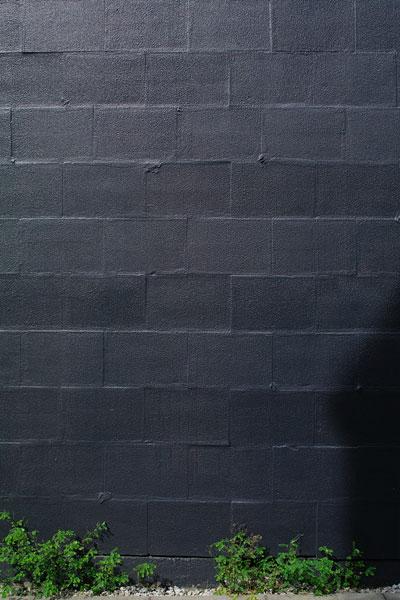 20100629-black04.jpg