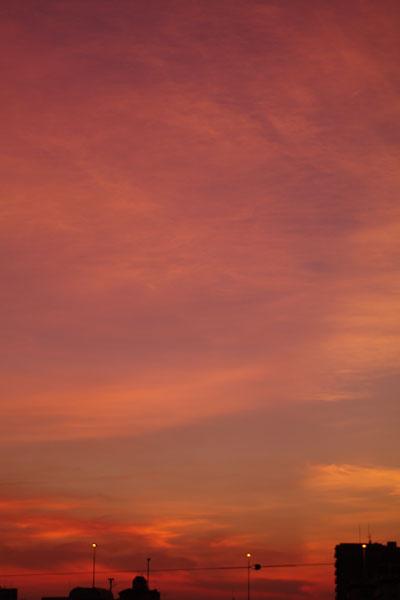 20100830-eveningglow10.jpg