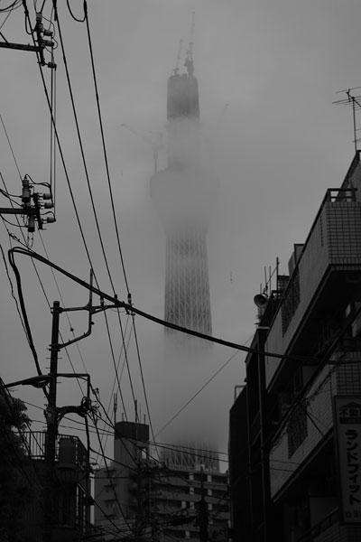 20100929-fog01.jpg