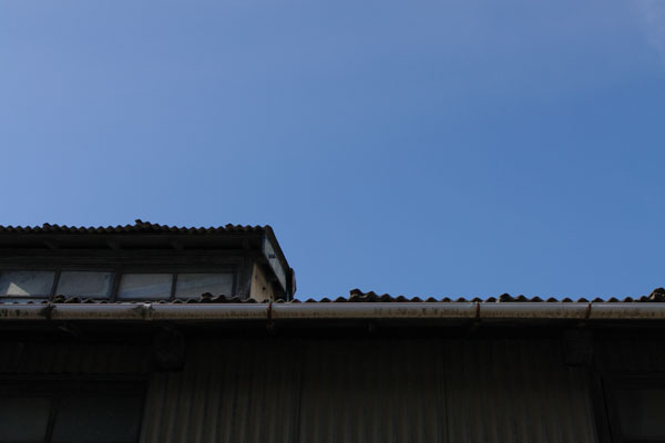 20110125-the_edge_of_the_eaves.jpg