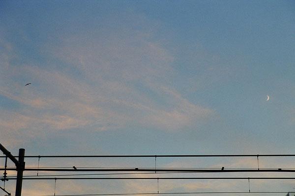 20110128-sky11.jpg
