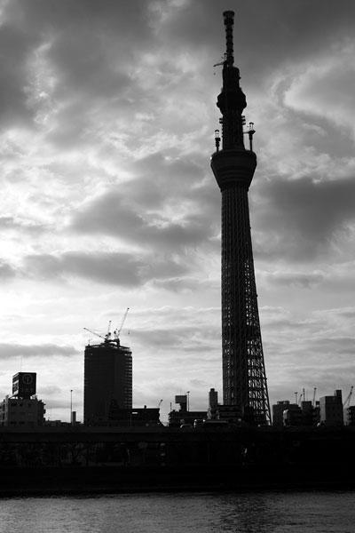 20110214-silhouette11.jpg