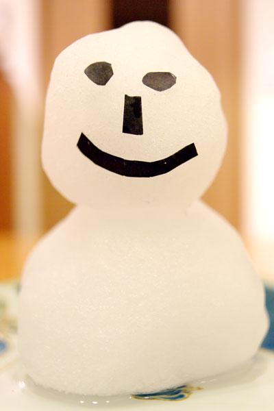 20110214-snowman04.jpg