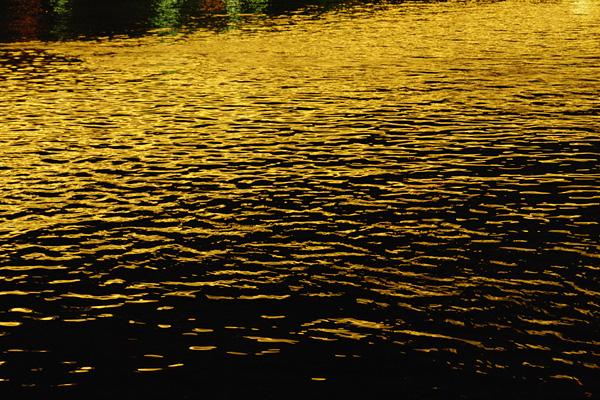 The Sumida River, Tokyo, Japan