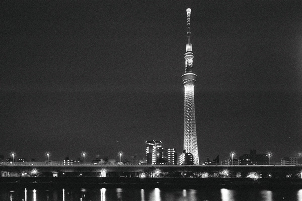 Tokyo Sky Tree and Metropolitan Expressway , Tokyo , Japan